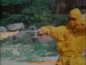 Proyecto ninjas del infierno.avi_snapshot_01.22.06_[2012.01.21_11.10.40]
