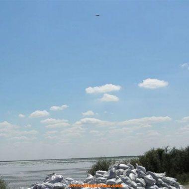 : Imagen del extraño objeto sobrevolando el cielo de Colonia Dora