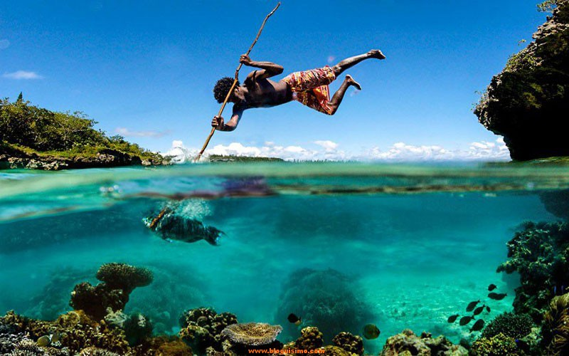 spear-fishing-perfect-timing