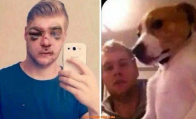 Finalmente atraparon al maltratador de perros y le dieron una paliza