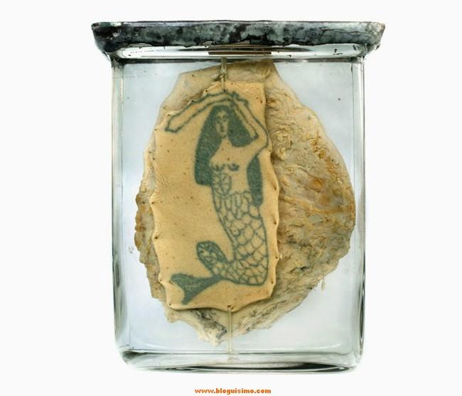 15-tatuajes-de-presos-conservados-en-formol6