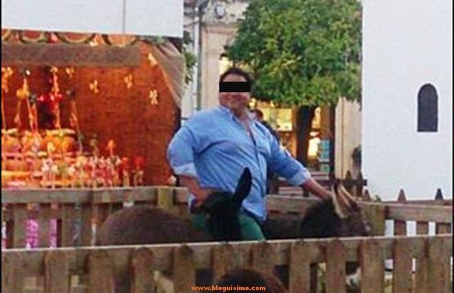 Muere burro de un belén después lo montara un hombre obeso