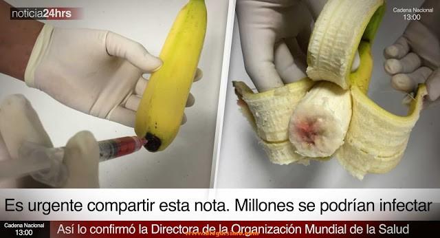 Se han detectado plátanos infectados con SIDA en todo España