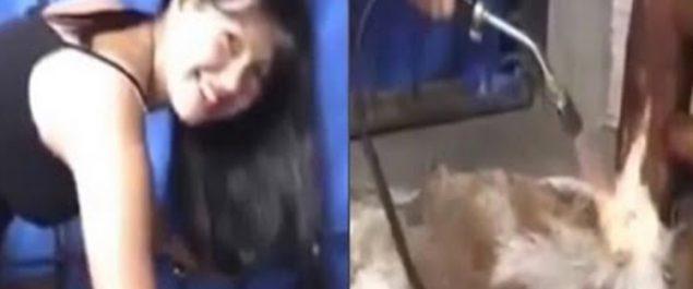 Vídeo viral de una MUJER usando un SOPLETE con un PERRO VIVO ¡Indignante!